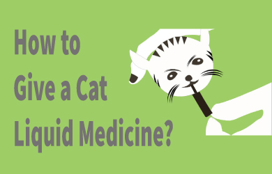 Giving your cat liquid medicine
